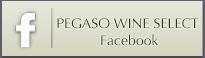 PEGASO Facebook